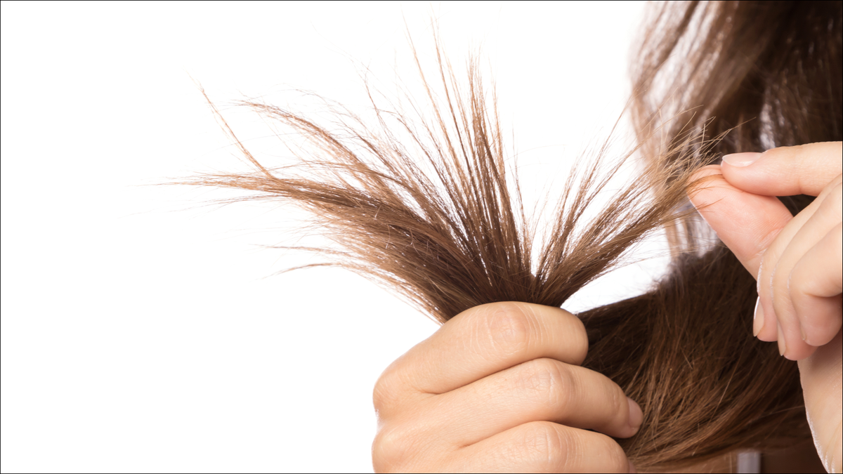 Female hair with split ends on white background