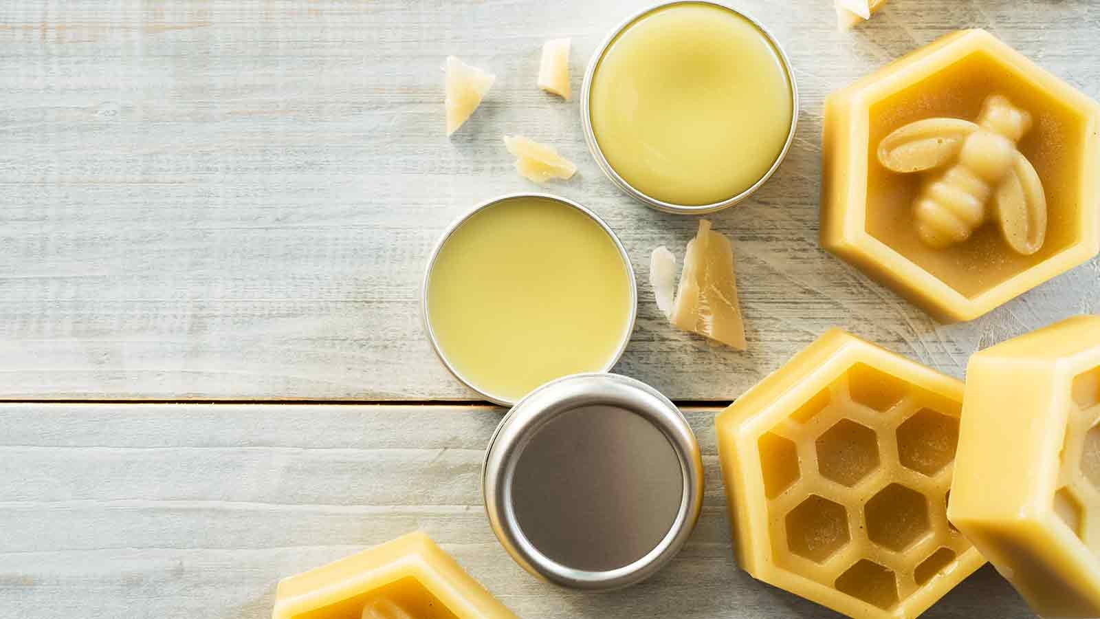 tin of bees wax lip balm surrounded by chunks of bees wax