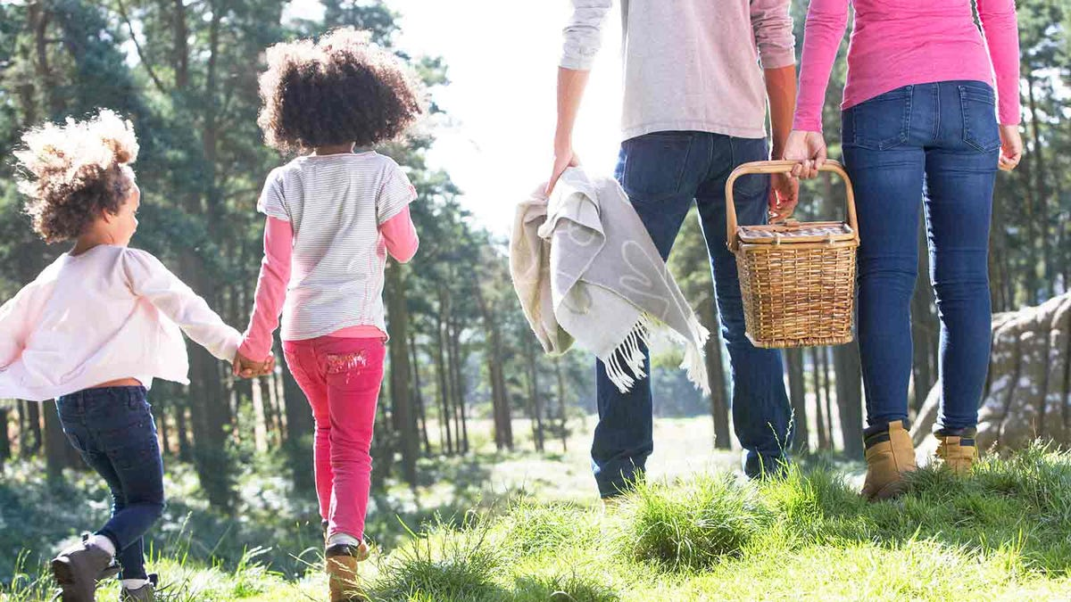 Family walking in the woods with a picnic basket.