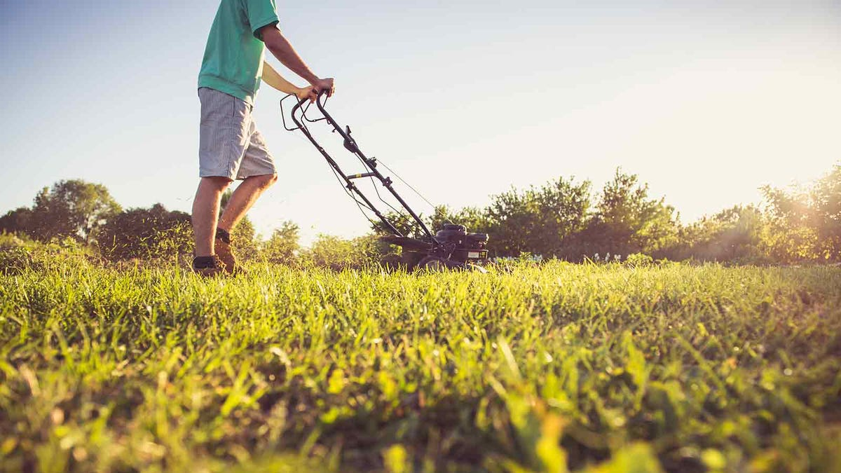 man mowing his law on a clear and sunny day