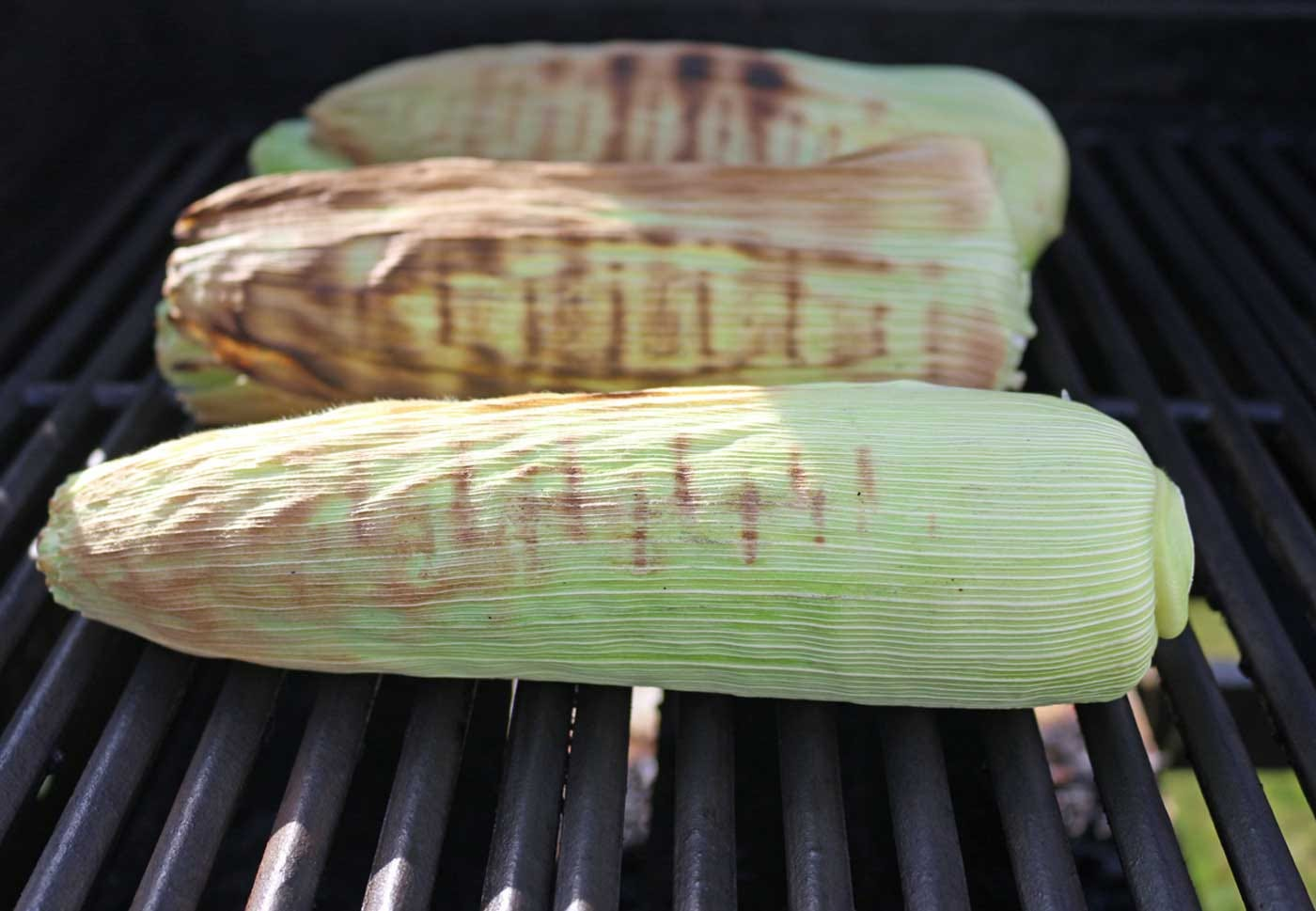 Grilling corn on the cob with the husk on.