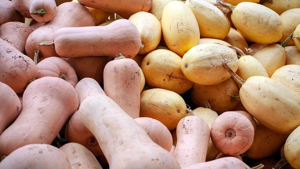 spaghetti squash and butternut squash piled up at the market