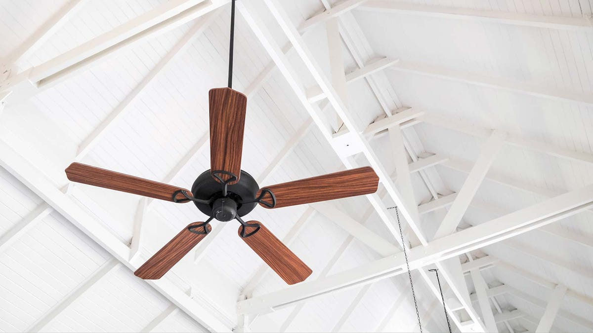 large ceiling fan hanging ftom a white vaulted timber ceiling