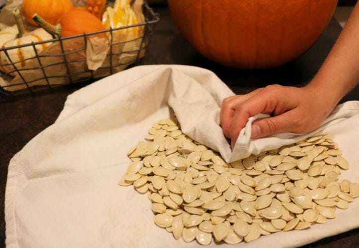Drying pumpkin seeds with a clean dish towel.
