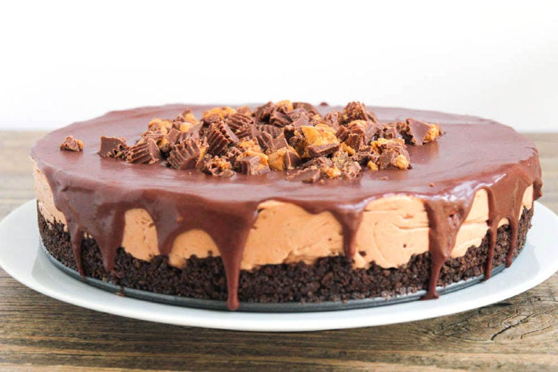 A beautiful peanut butter cheesecake, topped with ganache, and chopped Reese's.