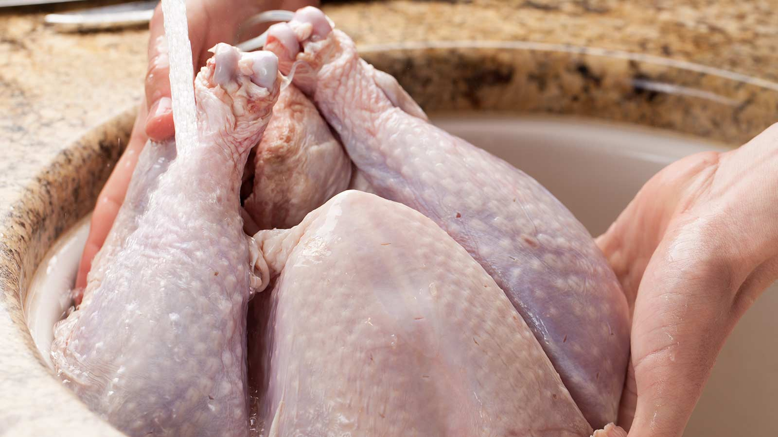 Hands washing a raw turkey in a sink.