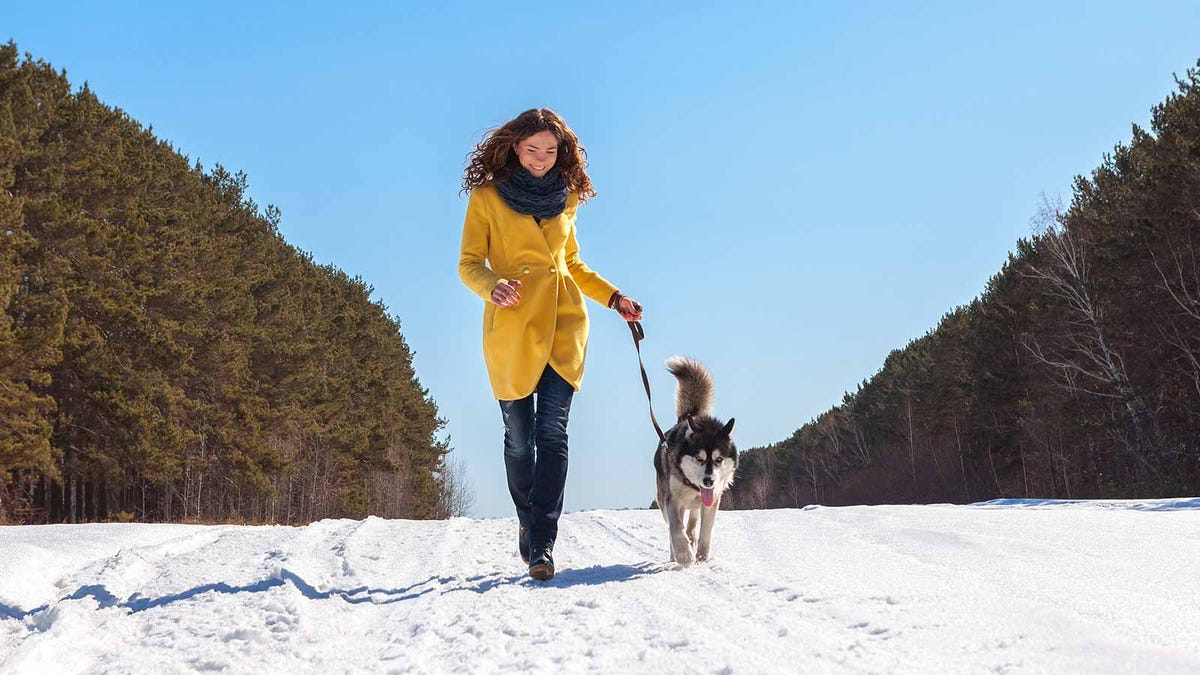 Woman walking her dog down a snowy road.