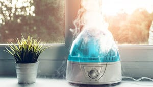 Want to Lower Your Heating Bill? Keep the Humidity Up