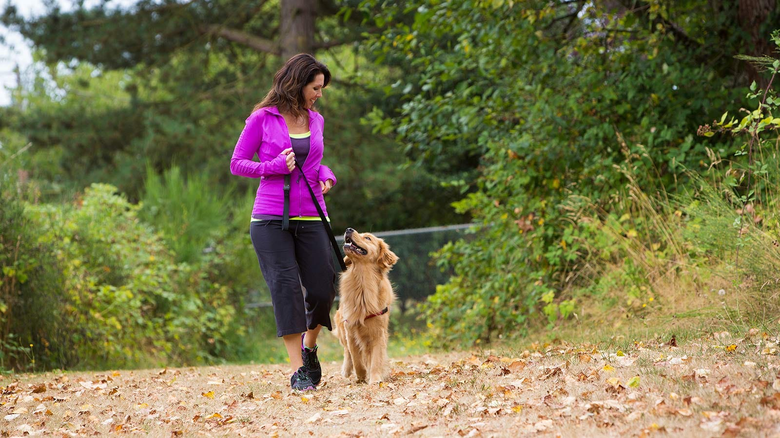 A woman walking her golden retriever on a nature trail.