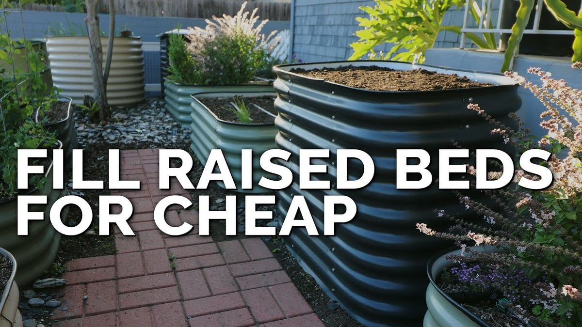 Raised beds filled with high quality soil in the Epic Gardening backyard garden.