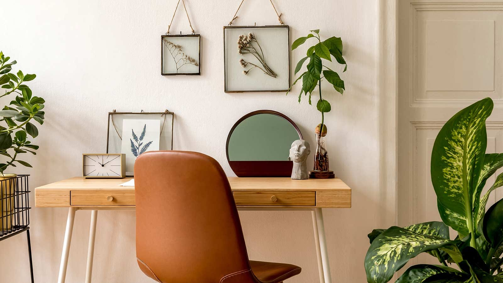 An airy home office with live plants and framed plant clippings.