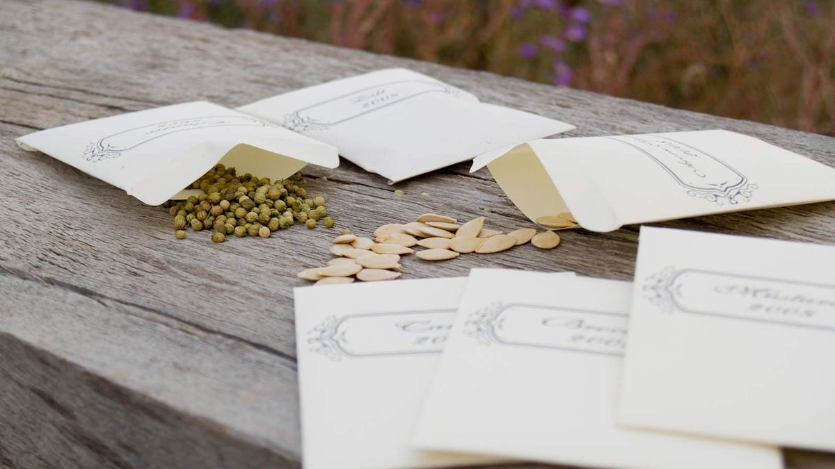 Packets of seeds spilled out on a picnic table.
