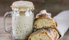 5 Simple Sourdough Starters to Get You Baking