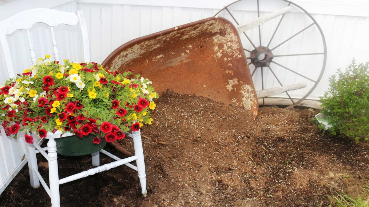 A chair planter sitting in a corner garden next to a rusted wheelbarrow and wagon wheel.