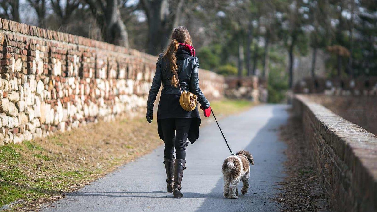 Woman walking her dog down a scenic lane.