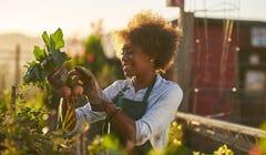 12 Therapeutic Benefits of Gardening