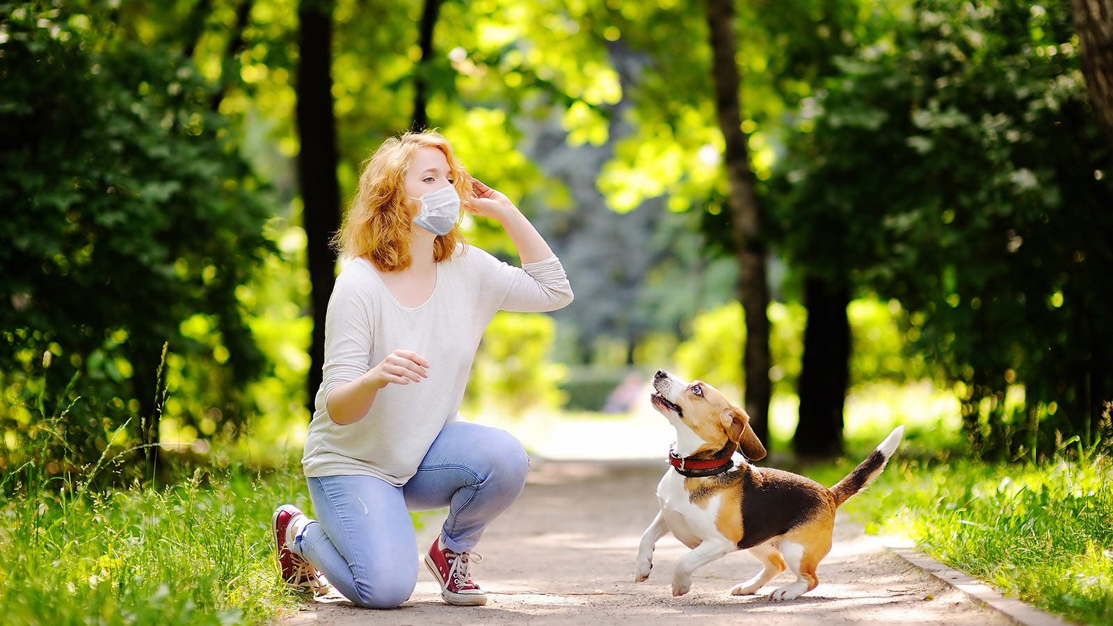 A woman wearing a mask, preparing to throw a toy for her dog to fetch on a nature trail.