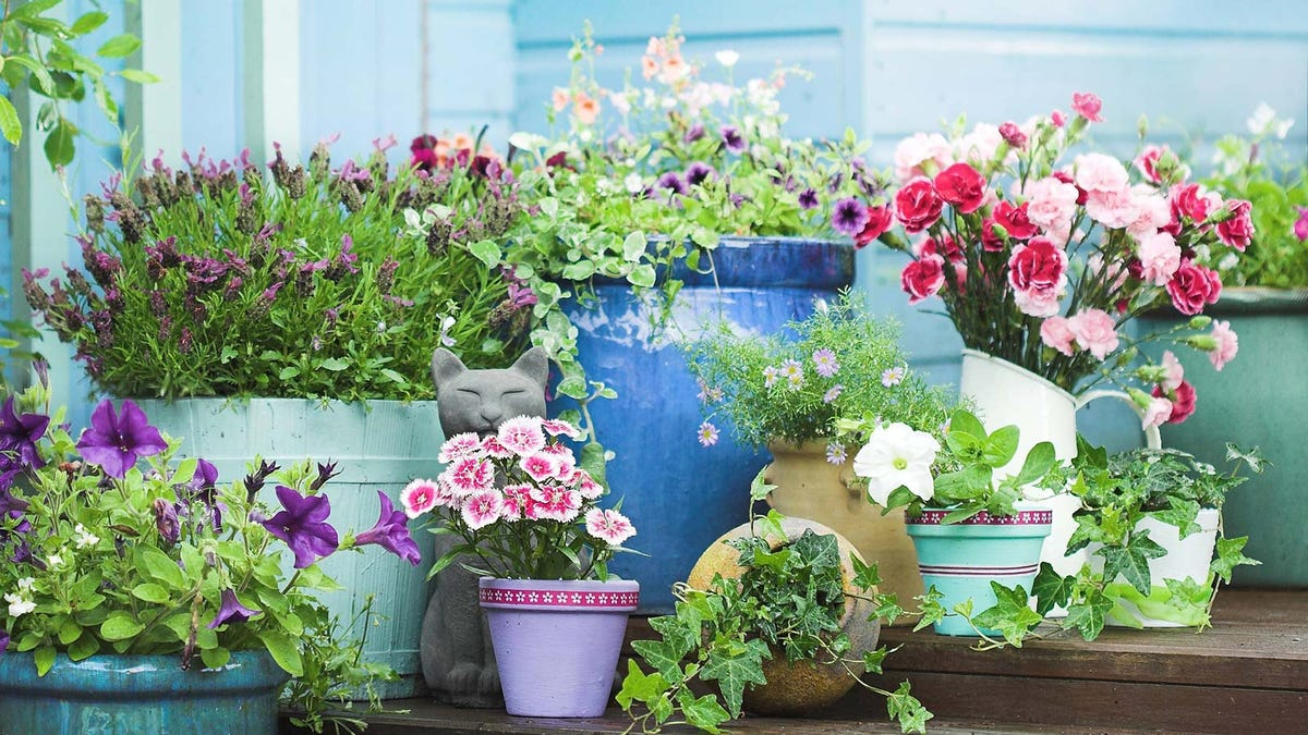 A patio covered with colorful planters filled with flowers.