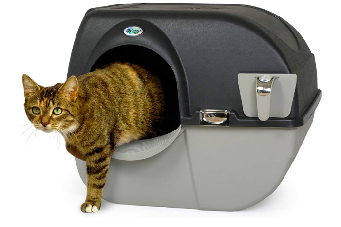 rounded dark and light gray litterbox with a tabby cat leaving