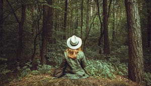 How to Improve Your Well-Being with Forest Bathing