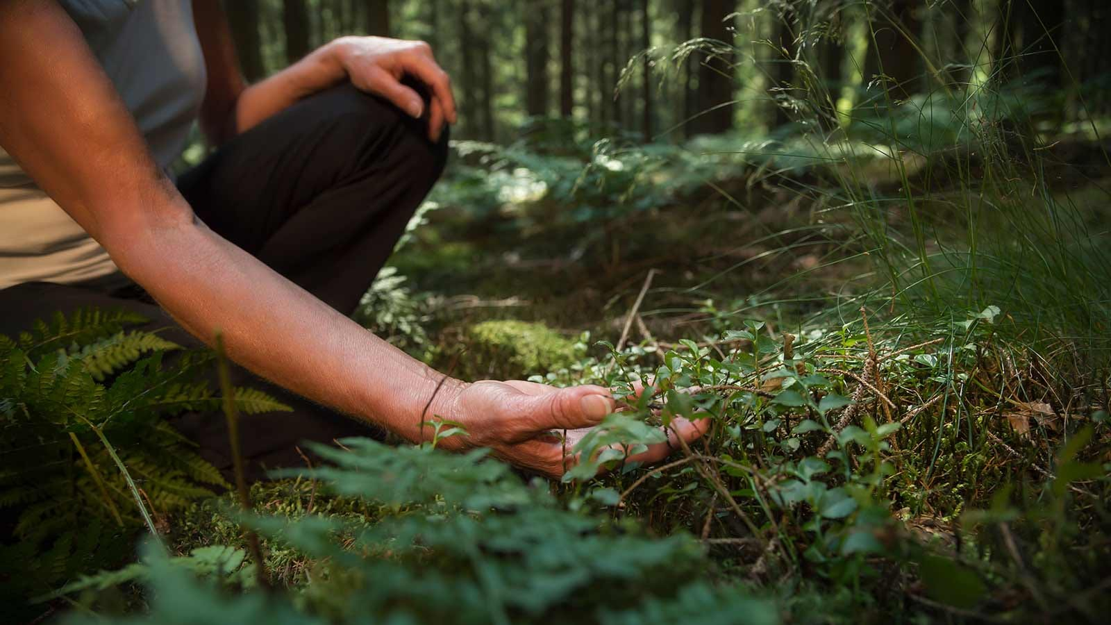 Woman looking at plants growing in the forest, relaxing with nature.