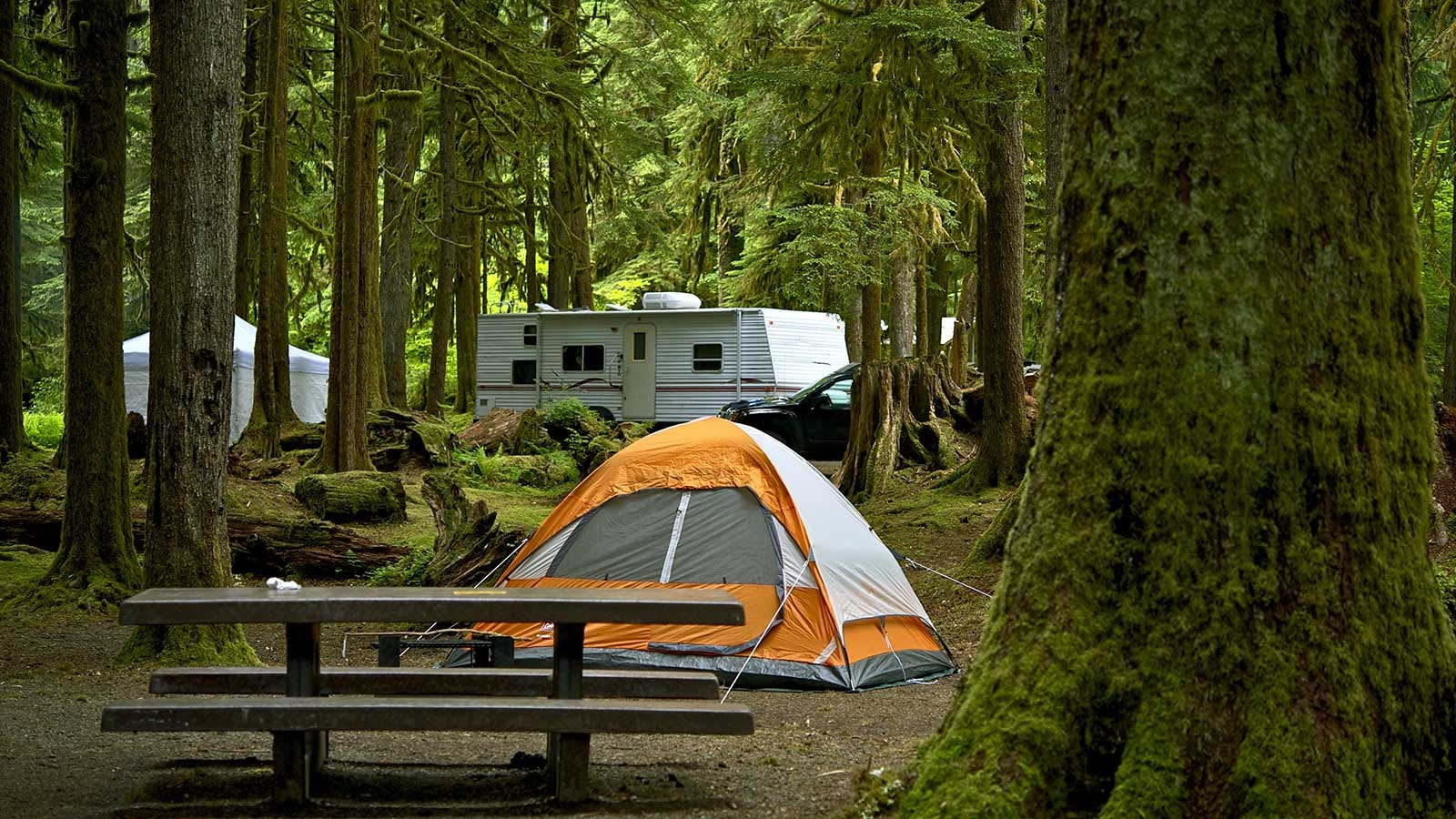 A picnic table, two tents, and a camper in a woodland campground.