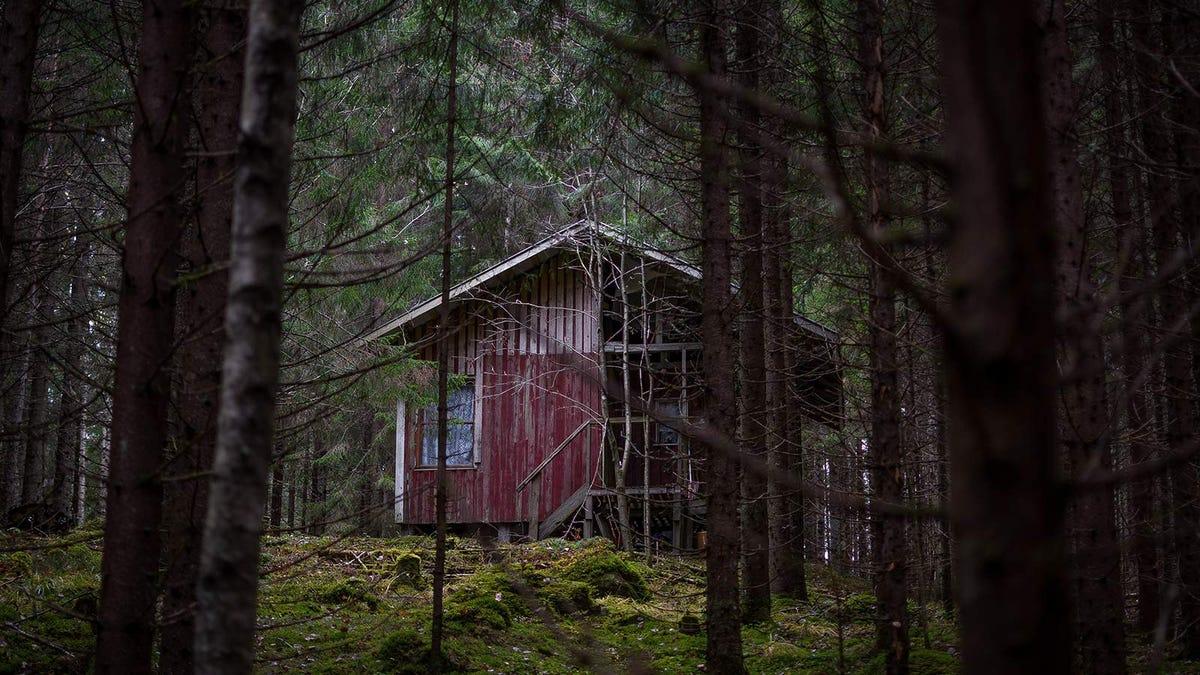 A spooky, rundown cabin in the woods.