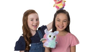The Best Hatchimals You Can Buy