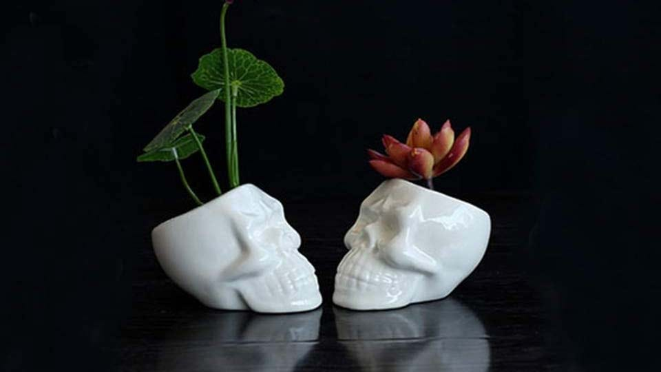 Two small ceramic skull planters with succulents.