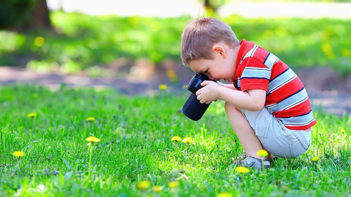 A little boy taking photos of dandelions.