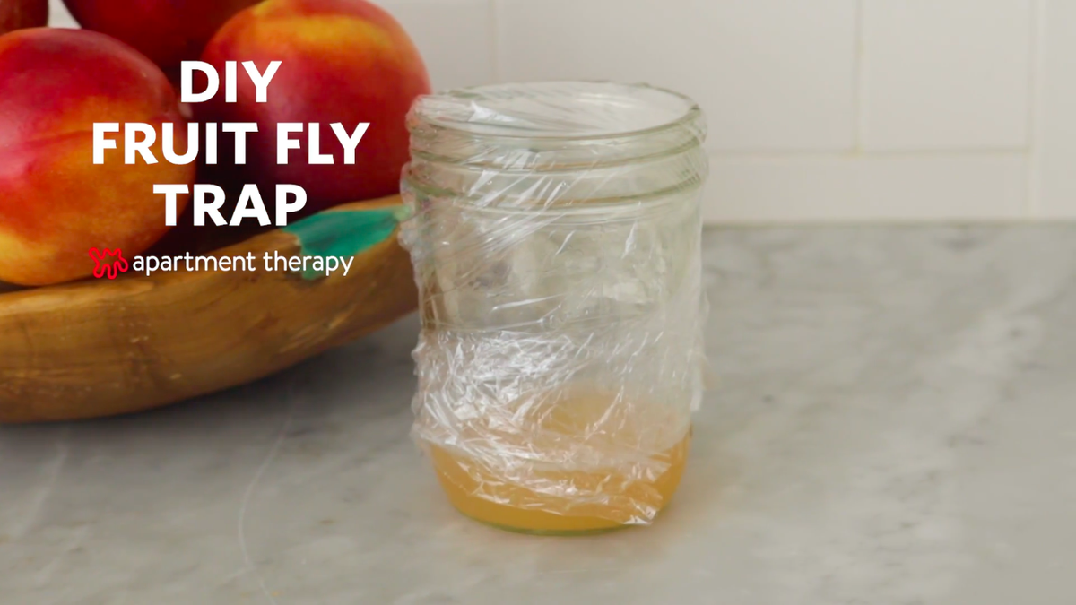 A jar covered with plastic wrap sitting on a counter.