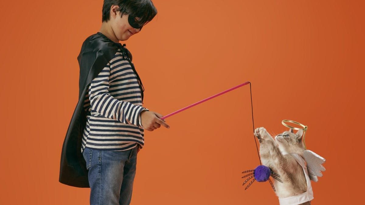 A boy wearing a mask and cape using a string toy to play with a cat in an angel costume.