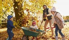 How to Repurpose Those Autumn Leaves