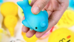The Squishies Sets Your Child Will Go Wild For
