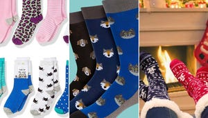 Holiday 2020: 10 Sock Stocking Stuffers for Everyone on Your List