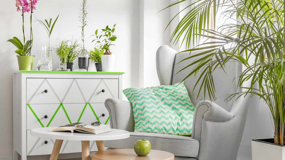 A living room is decorated with white furniture and several green houseplants.