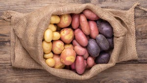 Which Potatoes Work Best for Mashing, Frying, and Roasting?