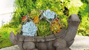 The Best Garden Statues for Your Outdoor Space