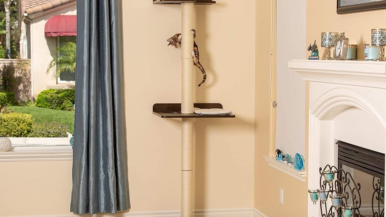 A cat climbing a wall-mounted cat tree.