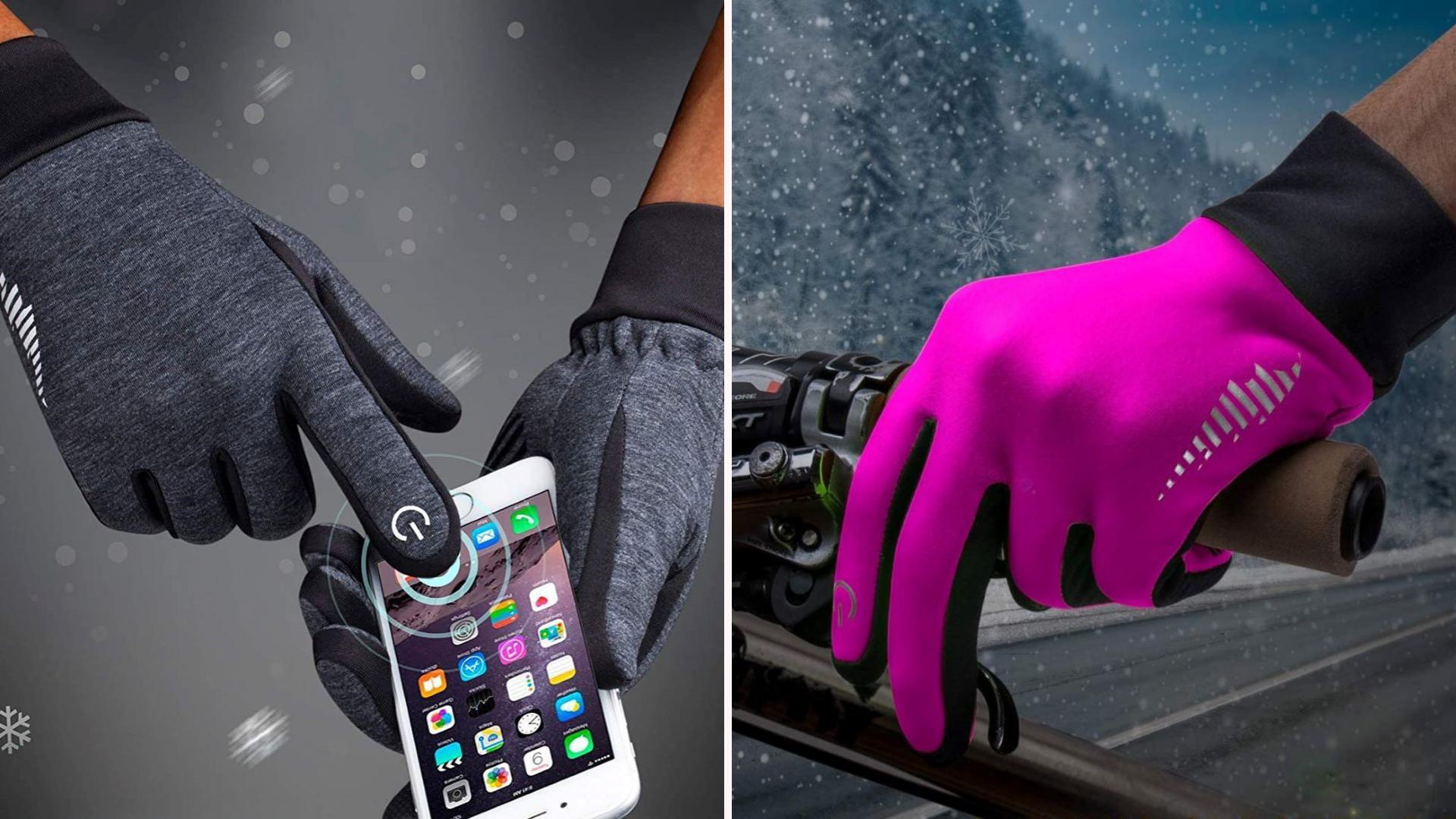 Gray and Purple Simari Gloves