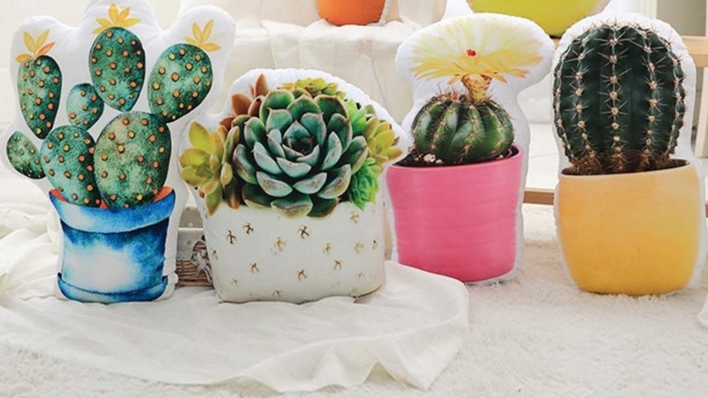 Pot of succulents pillow with other plant pillows.
