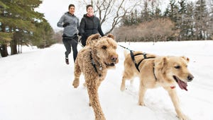 These 7 Outdoor Activities Will Give You a Real Winter Workout
