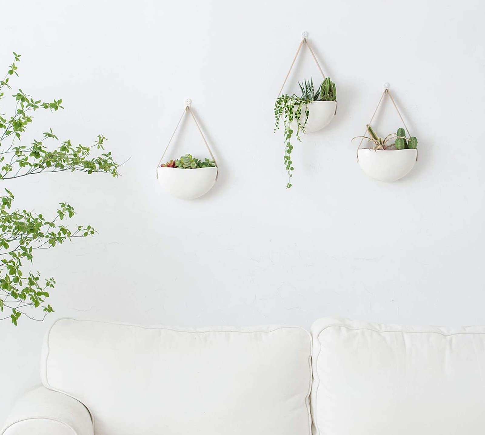 Three round hanging planters on a white wall above a white sofa