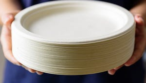 The Best Paper Plates for Your Next Party or Picnic
