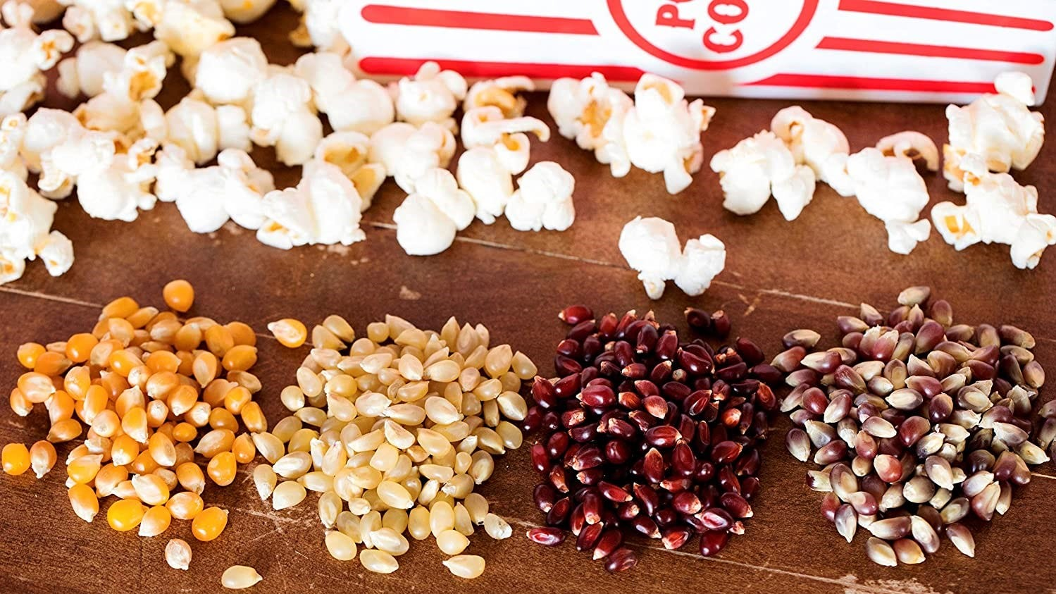 A display of four different types of popcorn kernels.