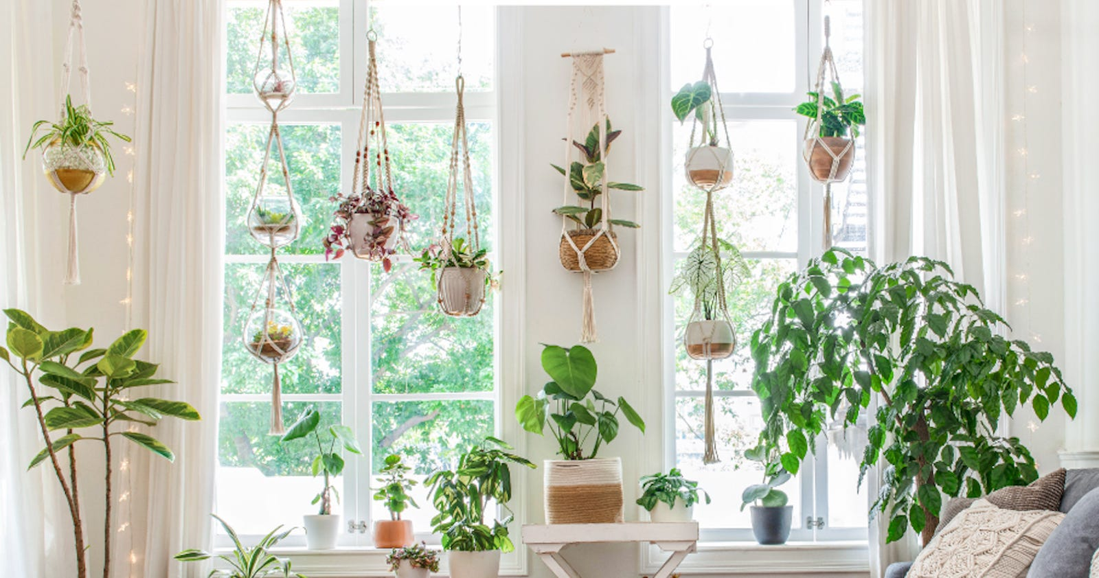 Seven Mkono woven planters with plants hanging in front of a window.