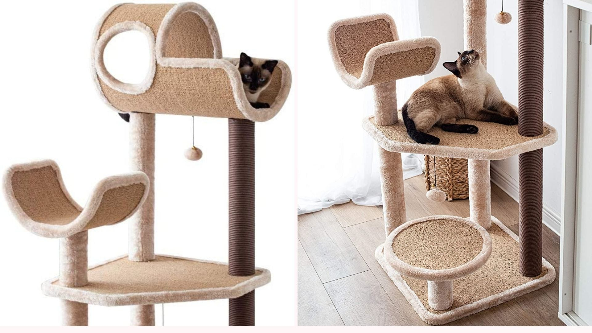 A Siamese cat on top of the Catry Activity Tree, and the same kitty lying on a lower level of the tree looking up at the dangling ball.