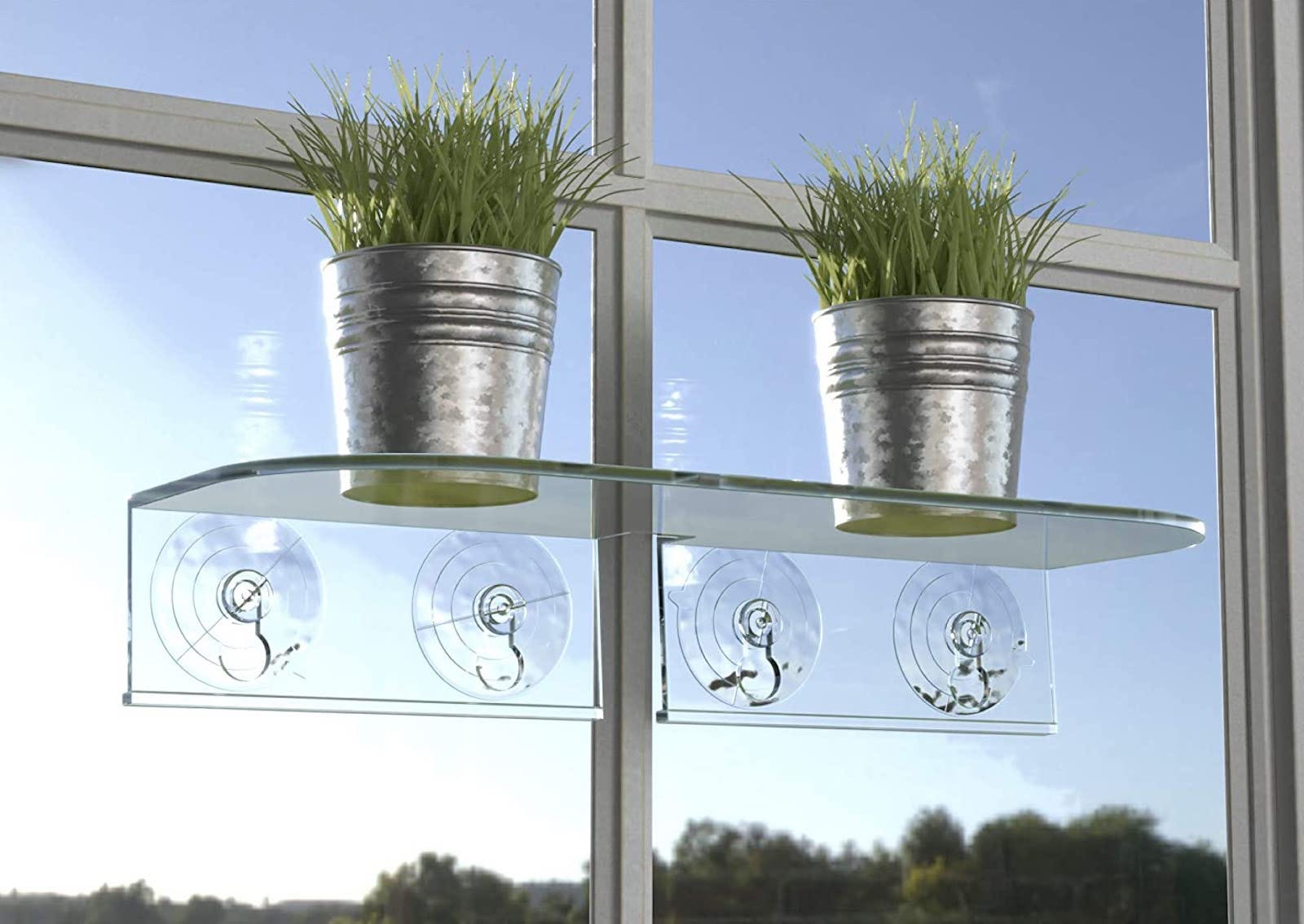 Two small plants in metal pots sit on a clear acrylic shelf attached to a sunny window