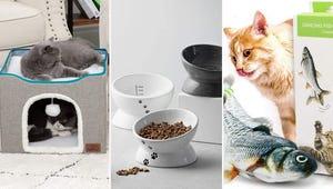 14 Feline Supplies Every New Cat Owner Needs