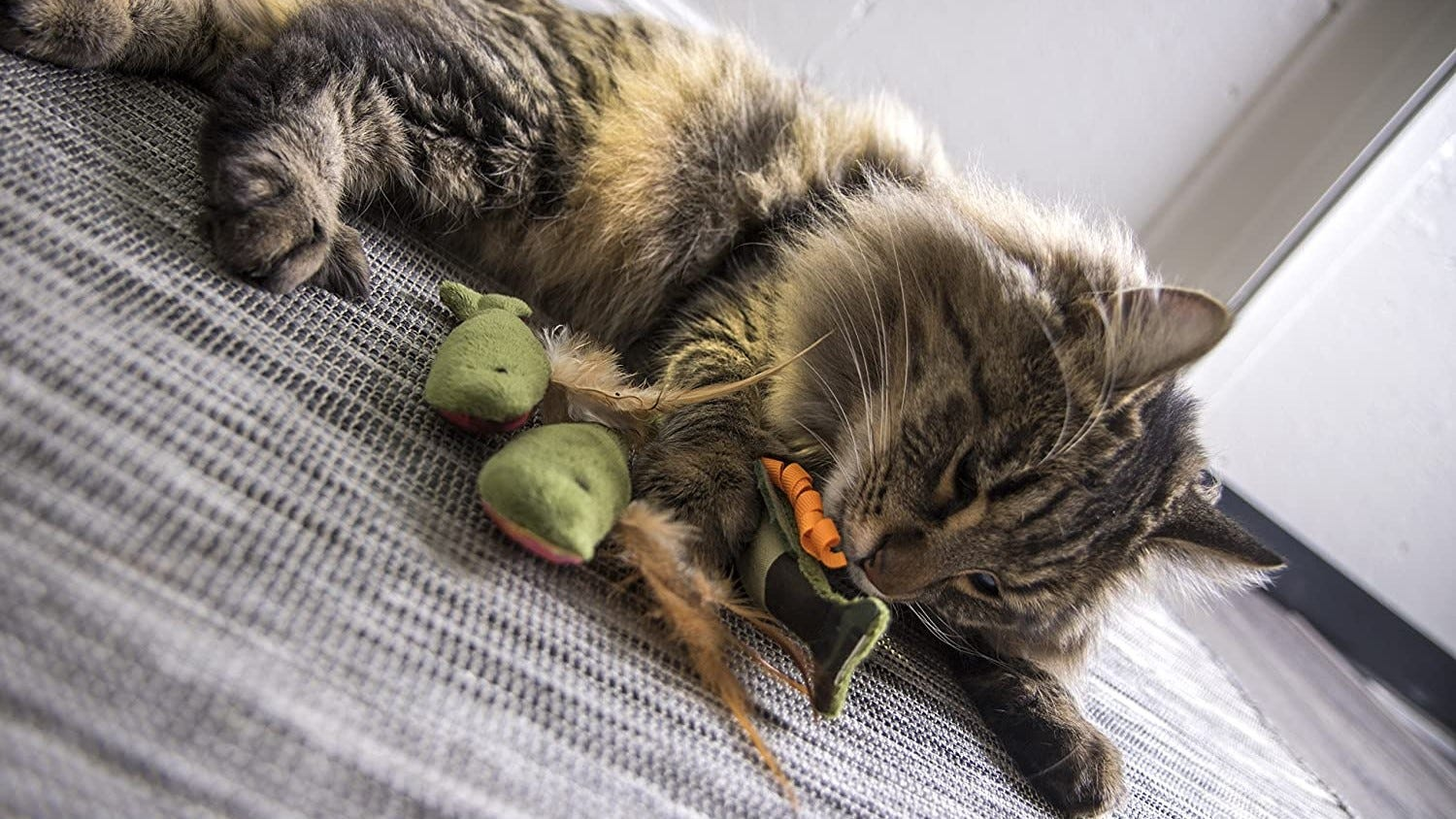 A long-haired tabby cat playing with the Fish Friends catnip toys.